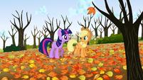 Twilight and Applejack -beautiful, isn't it- S1E13