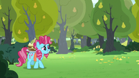 Chiffon Swirl comes out of the bushes S7E13