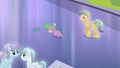 Crystal Pony walking up to Spike S4E24.png