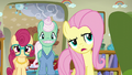 """Fluttershy """"maybe if you stuck with it"""" S6E11.png"""