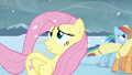 Fluttershy 'It's one of the' S3E1.png