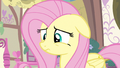 Fluttershy thinking S3E13.png