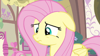 Fluttershy thinking S3E13