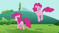 Pinkie Pie clone looking around S3E3