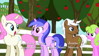Ponies waiting in line S2E15