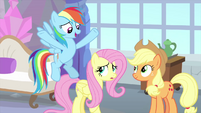 "Rainbow Dash ""teach us!"" MLPS3"