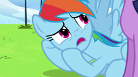 Rainbow Dash --we really messed up-- S6E24