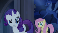 Rarity tells Fluttershy about the secret door S4E03