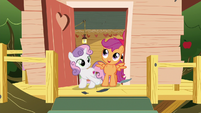 Scootaloo --can you believe it--- S6E19