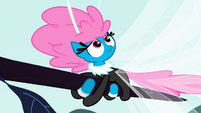 Seabreeze looking up at Fluttershy S4E16
