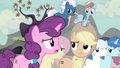 """Sugar Belle """"your cutie marks will be gone forever!"""" S5E2.png"""