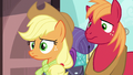 Applejack and Big Mac confused by Pinkie Pie S6E17.png