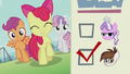 CMC sings 'You gotta vote for change'; ballot paper shows Pipsqueak's checkbox ticked S5E18.png