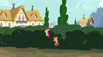 CMC sneaking over the bushes S4E15