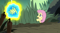 "Fluttershy ""flash bees can get pretty aggressive"" S7E25"