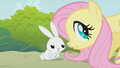 """Fluttershy and Angel """"you need some water?"""" S1E07.png"""