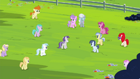 Foals gathering around Diamond Tiara and Silver Spoon S4E15