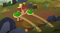 Hooffield stallion with watermelon catapults S5E23