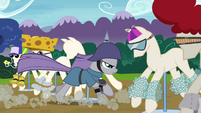 Maud Pie putting on spiked helmet S4E18