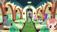 Ponies riding the Friendship Express train S8E8