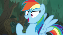 "Rainbow Dash ""let's have some fun!"" EGSB"