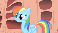 "Rainbow Dash to friends ""I'm gonna go rest up"" S1E16"