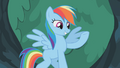 Rainbow Dash well how else S1E14.png