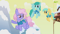 Rainbowshine says Ditzy went north S1E11.png