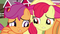 Apple Bloom and Scootaloo S3E04.png