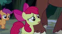 Apple Bloom asks if Trouble Shoes' reputation is true S5E6