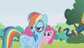 Clueless Rainbow Dash S1E5.png