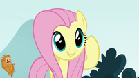Fluttershy accidentally hits a puckwudgie S8E2