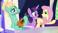 Fluttershy asking where Spike is S6E11.png