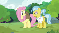 Fluttershy lifts Lola the sloth onto her back S7E5