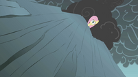Fluttershy looks down at the cliff S1E07