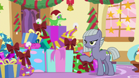Limestone in front of a pile of presents MLPBGE