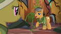 "Quibble ""Rainbow Dash and I have this covered"" S6E13.png"