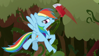 Rainbow Dash chopping through vines S9E2