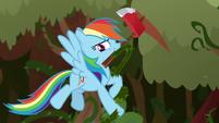 Rainbow Dash chopping through vines S9E2