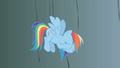 Rainbow Dash exasperated when Fluttershy falls S1E07.png