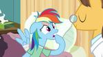 Rainbow Dash hoof bite S02E16