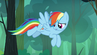 Rainbow Dash looking for berries to pick S7E16