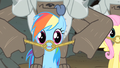 Rainbow Dash question look S1E19.png