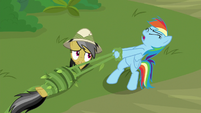 Rainbow Dash trying to help Daring Do S9E21