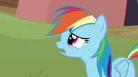 Rainbow asks Lightning Dust about Scootaloo S8E20