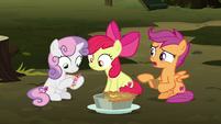 "Scootaloo ""got to be pulling our hooves!"" S8E10"
