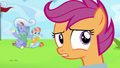"""Scootaloo very confused """"really?"""" S7E7.png"""