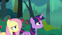 Twilight thinks about the Tree of Harmony S8E13