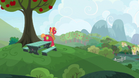 Big Mac goes looking for Sugar Belle S9E23
