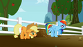 Disappointed Applejack and Rainbow Dash S1E03.png